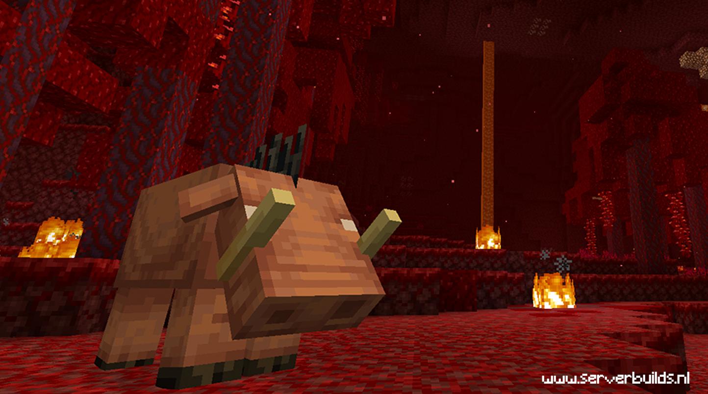 Minecraft 1.16 update